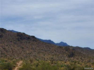5 LOTS W PAIUTE DRIVE, Meadview, AZ 86444 - Photo 2