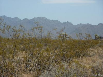 0000 THELMA ROAD, Yucca, AZ 86438 - Photo 1