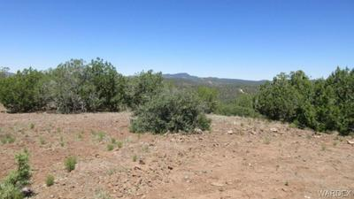 0000 N MAPUANA ROAD, Kingman, AZ 86401 - Photo 1