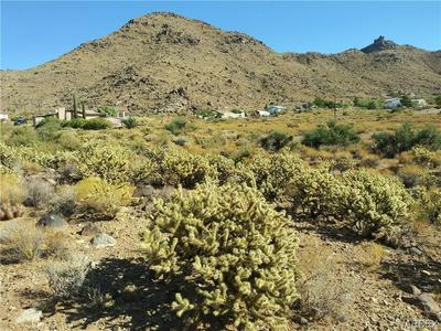 - CHOLLA DRIVE, Golden Valley, AZ 86413 - Photo 2