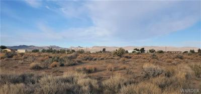 . N TEDDY ROOSEVELT ROAD, Golden Valley, AZ 86413 - Photo 1