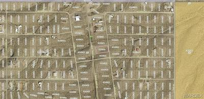 28890 N PIERCE FERRY RD, Meadview, AZ 86444 - Photo 2