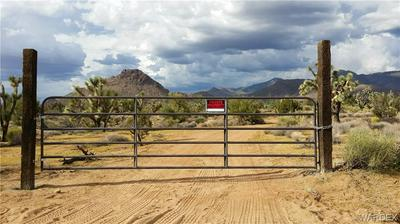 6343 E MOUNTAIN VIEW DRIVE, Yucca, AZ 86438 - Photo 2
