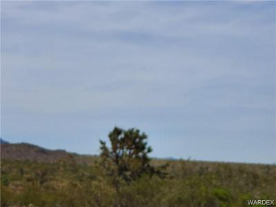 5 LOTS W PAIUTE DRIVE, Meadview, AZ 86444 - Photo 1