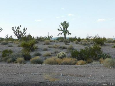 445 E GALLOWAY DR, Meadview, AZ 86444 - Photo 2