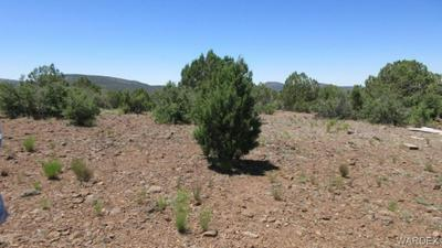0000 N MAPUANA ROAD, Kingman, AZ 86401 - Photo 2