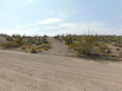 800 FRAZIER LN, Meadview, AZ 86444 - Photo 2