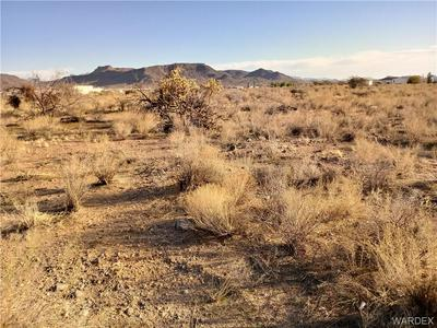 0 BURRO, Golden Valley, AZ 86413 - Photo 1