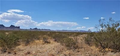 . GARNET RD., Golden Valley, AZ 86413 - Photo 2