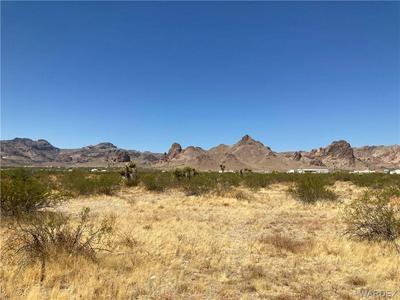 . YAQUI ROAD, Golden Valley, AZ 86413 - Photo 1