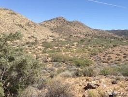 LOT 129 N MINE ROAD, Hackberry, AZ 86411 - Photo 2