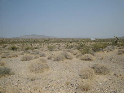 0000 FLORAL DRIVE, Meadview, AZ 86444 - Photo 1