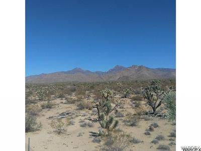 -3072 ANEGAM ROAD, Yucca, AZ 86438 - Photo 2