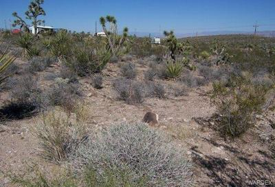 1442 W CALICO DR, Meadview, AZ 86444 - Photo 1