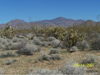 2828 BILLY THE KID, Yucca, AZ 86438 - Photo 1