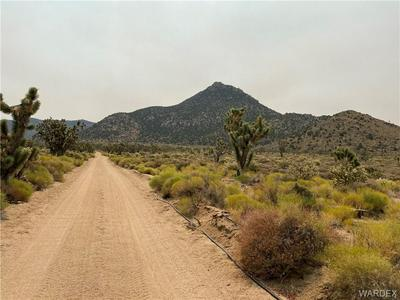 2 LOTS MARINA DRIVE, Meadview, AZ 86444 - Photo 2