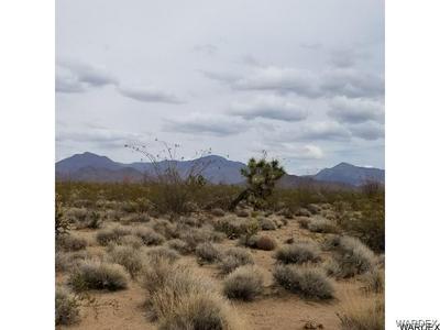 2832 BILLY THE KID, Yucca, AZ 86438 - Photo 1