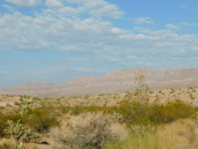 715 & 755 E SUMNER DRIVE, Meadview, AZ 86444 - Photo 1