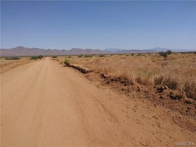 000 JURASSIC, Golden Valley, AZ 86413 - Photo 2
