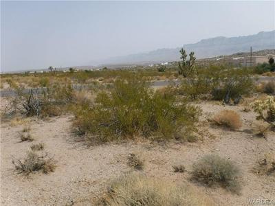 760 E PUEBLO DR, Meadview, AZ 86444 - Photo 1