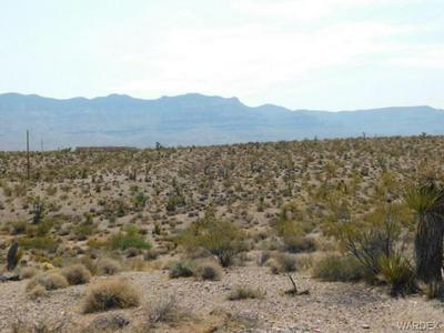 800 FRAZIER LN, Meadview, AZ 86444 - Photo 1