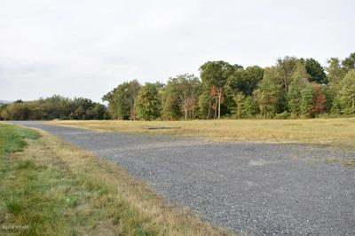 000000 PINE MOUNTAIN ROAD, McElhattan, PA 17748 - Photo 2