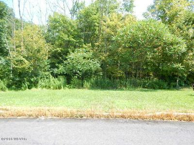LOT #29 HEARTLAND BOULEVARD, Elysburg, PA 17824 - Photo 1