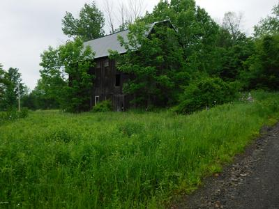 10655 ROUTE 154, Shunk, PA 17768 - Photo 2
