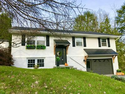 2933 SCHICK BLVD, Montoursville, PA 17754 - Photo 1