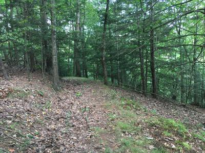 TALLMAN HOLLOW ROAD, Montoursville, PA 17754 - Photo 2