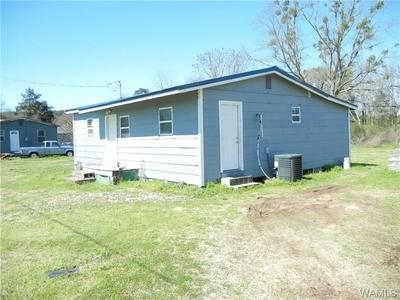 355 STEPP LINE RD, Aliceville, AL 35442 - Photo 2