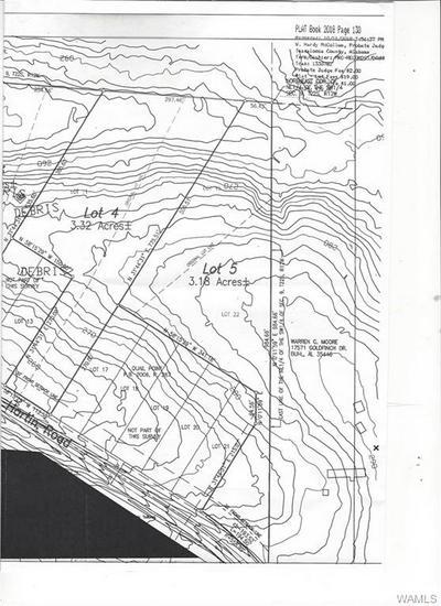 LOT 5 GEORGE HARTIN ROAD, Buhl, AL 35446 - Photo 2