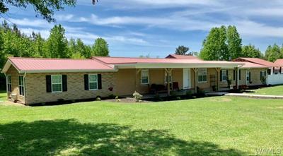 43 COUNTY ROAD 119, Fayette, AL 35555 - Photo 2