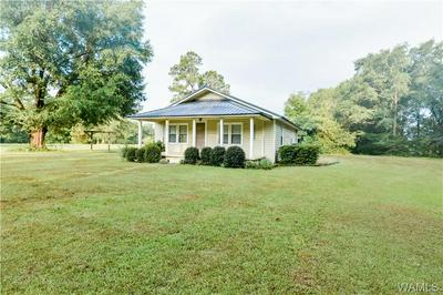 10704 SIPSEY VALLEY RD N, Buhl, AL 35446 - Photo 2