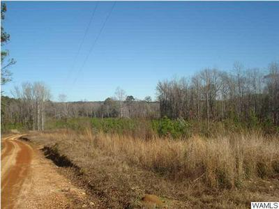 000 KINARD ROAD, Brent, AL 35034 - Photo 2