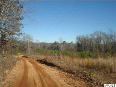 000 KINARD ROAD, Brent, AL 35034 - Photo 1