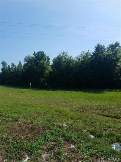 0 69 SOUTH, Greensboro, AL 36744 - Photo 2