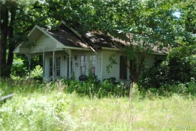 308 25TH ST NE, Fayette, AL 35555 - Photo 1