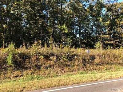 0 DAFFRON ROAD # 1, Duncanville, AL 35456 - Photo 1
