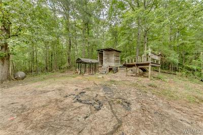 12226 BUHL CUTOFF RD, Buhl, AL 35446 - Photo 2