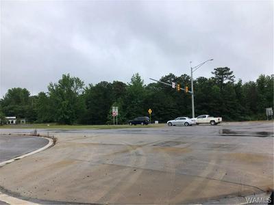 0 HWY 11, Woodstock, AL 35188 - Photo 1