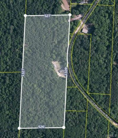 0 LAKE PAYNE ROAD, Duncanville, AL 35456 - Photo 2