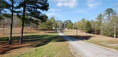 10888 HURRICANE VALLEY RD, Brookwood, AL 35444 - Photo 1