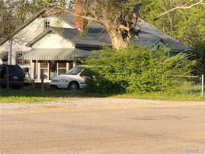 78 MILLWOOD RD, Greensboro, AL 36744 - Photo 1