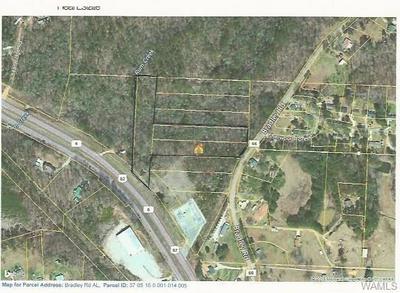 0 BRADLEY ROAD, Duncanville, AL 35456 - Photo 2