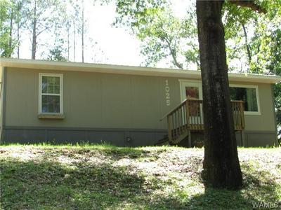 1025 9TH AVE SW, Fayette, AL 35555 - Photo 1