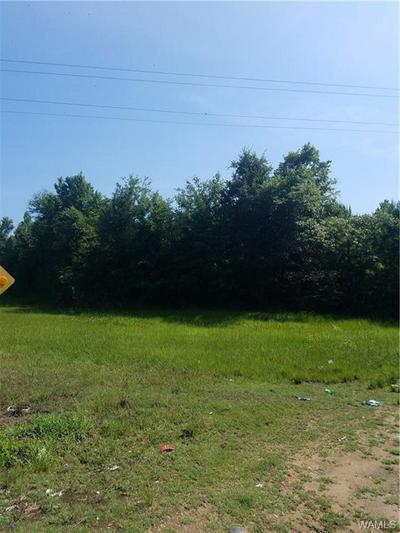0 69 SOUTH, Greensboro, AL 36744 - Photo 1