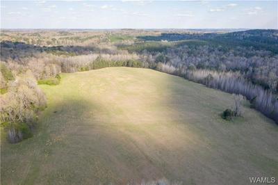10683 PROPST RD, Tuscaloosa, AL 35456 - Photo 2