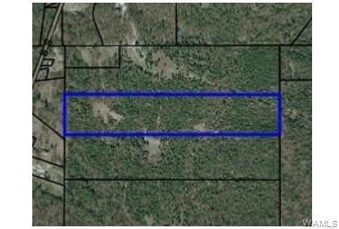 1 COUNTY ROAD, Gallion, AL 36742 - Photo 1