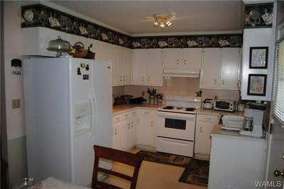 367 OLD KENNEDY RD, Millport, AL 35576 - Photo 2